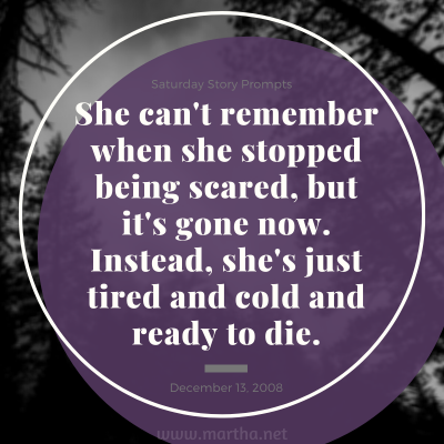 Saturday Story Prompts image for 2008-12-13. She can't remember when she stopped being scared, but it's gone now. Instead, she's just tired and cold and ready to die. written by Martha Bechtel