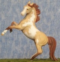 Unnamed Custom Arabian