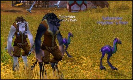 Tiny Purple Doom Chickens