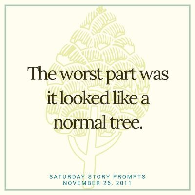 Saturday Story Prompts 11-26-2011