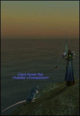 Ashella Fishing Rat Sunset Ocean