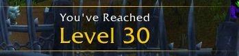 World of Warcraft Level 30