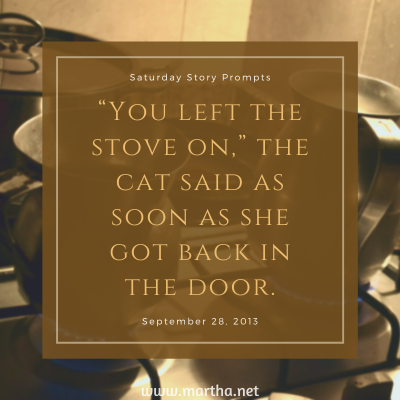"""""""You left the stove on,"""" the cat said as soon as she got back in the door. Saturday Story Prompt. September 28, 2013"""