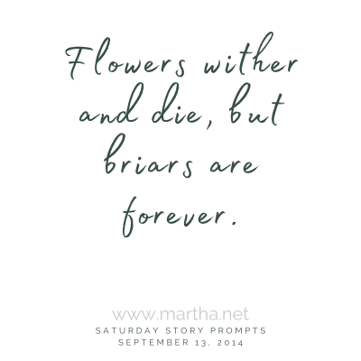 Flowers wither and die, but briars are forever. Saturday Story Prompt. September 13, 2014