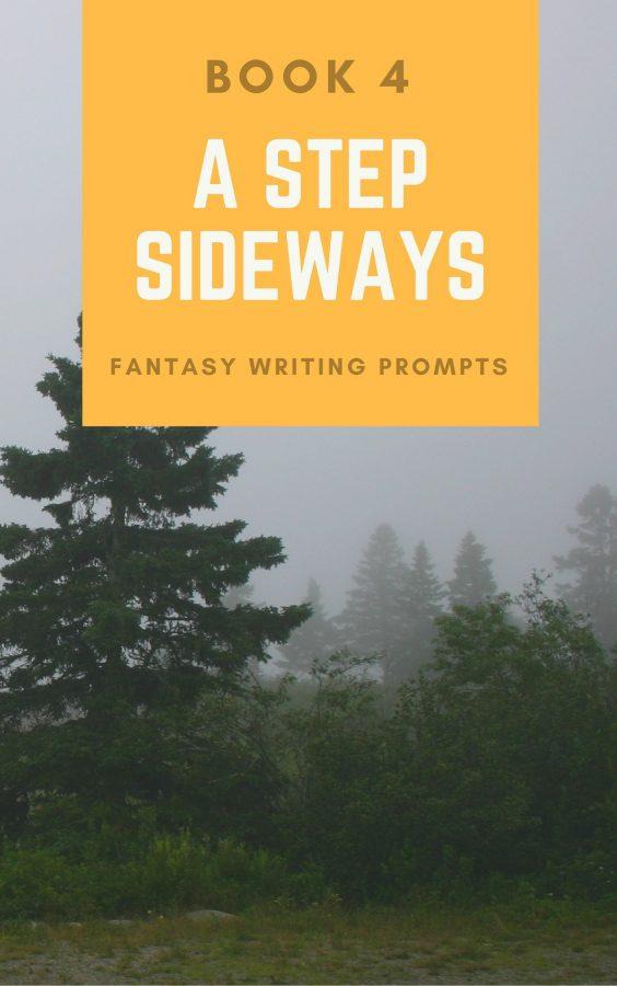 A Step Sideways - Book 4