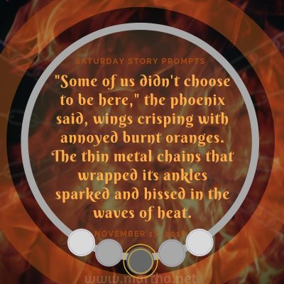 Some of us didn't choose to be here, the phoenix said, wings crisping with annoyed burnt oranges. The thin metal chains that wrapped its ankles sparked and hissed in the waves of heat. Saturday Story Prompt. November 17, 2018