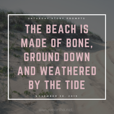 The beach is made of bone, ground down and weathered by the tide. Saturday Story Prompt. November 30, 2019