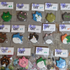 Flat Cat Head Magnets - Martha Bechtel - Big Group Shot