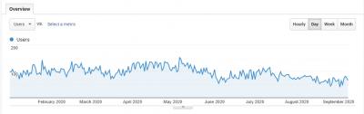 2020 Website Users