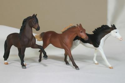 Custom Model Horse - Shop Link