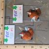 Fat Fox Magnets 004 005 - Martha Bechtel - Group shot scale