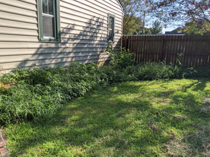 The backyard corner project