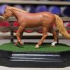 3x5 French Corners Rectangle - Grass Mix - Template A - Martha Bechtel - Model Horse Base - Portrait