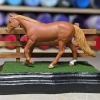 3x5 Scalloped Rectangle - Grass Mix - Template A - Martha Bechtel - Model Horse Base - Portrait
