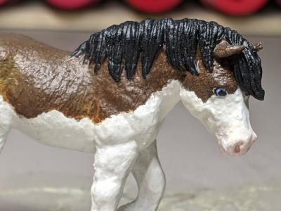 Mairzy Dapples - Custom Safari Ltd TOOB Walking Pony - Martha Bechtel - Headshot