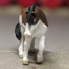 Mairzy Dapples - Custom Safari Ltd TOOB Walking Pony - Martha Bechtel - Nose