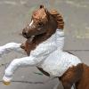 Rusty - Custom Safari Ltd TOOB Rearing Pony - Martha Bechtel - Headshot