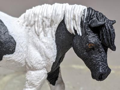 Buster - Custom Safari Ltd TOOB Walking Pony - Martha Bechtel - Headshot