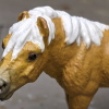 Daisy Mae - Custom Safari Ltd TOOB Standing Pony - Martha Bechtel - Headshot