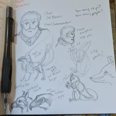 Fleet Commander and Stormhawk sketches