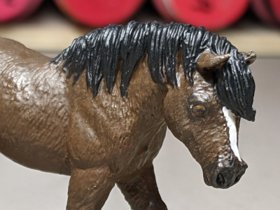 Maddy - Custom Safari Ltd TOOB Walking Pony - Martha Bechtel - Headshot