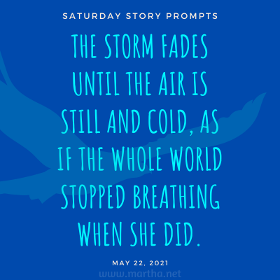 The storm fades until the air is still and cold, as if the whole world stopped breathing when she did. Saturday Story Prompt. May 22, 2021