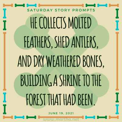 He collects molted feathers, shed antlers, and dry weathered bones, building a shrine to the forest that had been. Saturday Story Prompt. June 19, 2021