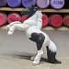 Domino - Custom Safari Ltd TOOB Rearing Pony - Martha Bechtel - Left