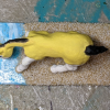 Gelbspritz - Custom Breyer Mini Whinnie Grazing Foal - Martha Bechtel - Top