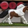 Lickitysplit - Custom Safari Ltd TOOB Running Pony - Martha Bechtel - Right