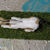 Cupid - Custom Breyer Mini Whinnie Romping Foal - Martha Bechtel - Top