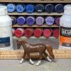 Jasmijn - Custom Breyer Stablemate Trotting Warmblood - Martha Bechtel - Scale